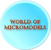 micromodels